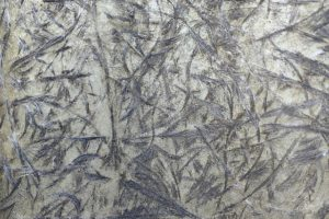 Scopriamo le caratteristiche dei tessuti fibra di vetro